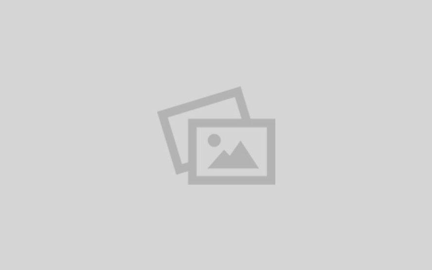 «تلاش افغانها برای صلح -د جمهور رئیس نجیب الله او ډاکټر محمدحسن کاکړ تاریخي لیکونه»